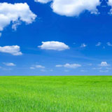 Blue sky, green grass