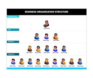 This is a preview of the Business Organization Chart